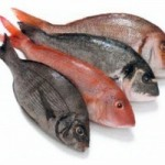 KSA-Kosher-Fish2